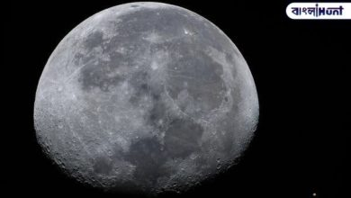 Photo of And just a few hours later, the largest pink moon will be seen in the sky