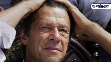 Photo of When I went to toss, India was scared to see me, strange comment of Imran Khan