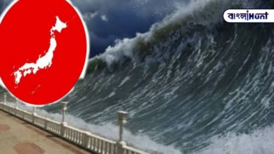 Photo of Do not panic in the midst of great danger! Tsunami warning issued in Japan