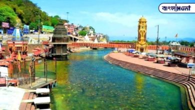 Photo of The Ganges has become extremely clear in Haridwar, and environmentalists are also surprised