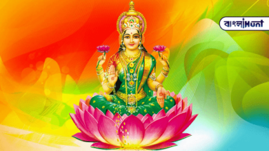 Photo of Worship mother Lakshmi on Thursday, there will be no financial crisis at home