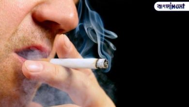 Photo of Cigarettes could reduce corona risk, says French scientists on final test