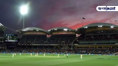 Photo of India will play its first day-and-night Test on foreign soil in Australia later this year.