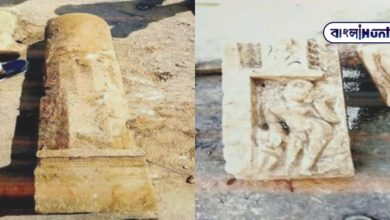 Photo of Look at the picture অব the remains of the temple, Shivling and broken idols were found in the premises of Ram Janmabhoomi!