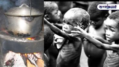 Photo of The world is full of prose in the state of hunger, the mother cooked stones for the children