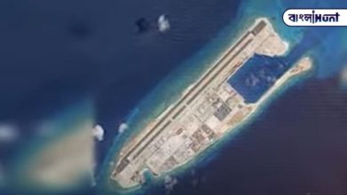 Photo of Satellite imagery reveals Chinese conspiracy, China building artificial island to encircle India
