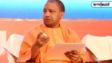 Photo of Yogi government to build 600 km herbal belt, medicinal plants on both sides of the road