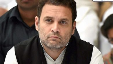 Photo of Center questions report to Kerala government on elephant poaching, BJP questions Rahul Gandhi's silence