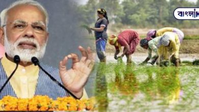 Photo of Creating a roadmap for a self-reliant India, the Modi government took big decisions for farmers and MSMEs