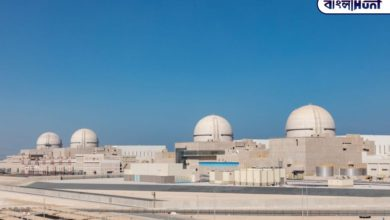 Photo of The first nuclear power plant in Arabia was launched in Abu Dhabi, assisted by South Korea