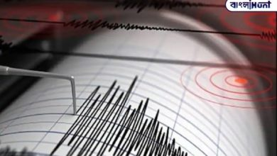 Photo of Earthquake prediction will be your Android phone, the fancy technology google