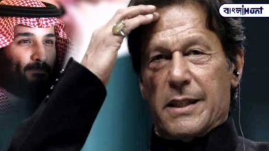 Photo of Imran Khan got drunk in love with China and Kashmir, got into trouble with Arabs!