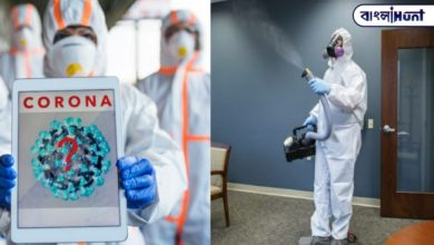 Photo of The good news is that the corona virus can be eliminated with a special gas
