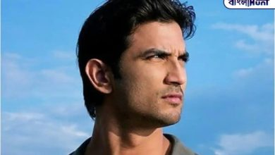 Photo of The actor's son-in-law dismissed multiple allegations against Sushant's family