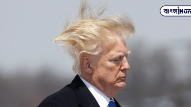 Photo of Donald Trump is very worried about his own hair, he wants to change the American law