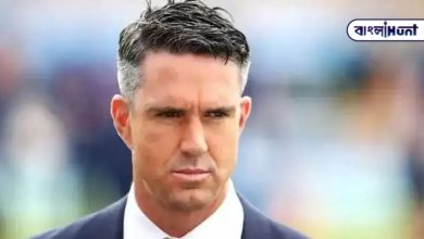 Photo of Who is the potential champion of IPL this time? Petersen informed