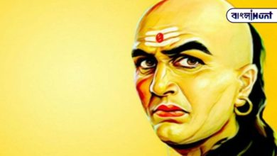 Photo of Chanakya principle: To be successful in life, you must learn to do this work