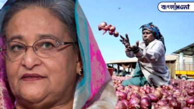 Photo of Bangladesh, India are weeping over onion, onion market is on fire to stop export