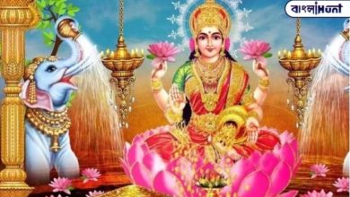 Photo of Remove this picture of mother Lakshmi now to maintain happiness and prosperity in the world, take a look at the position of the owl