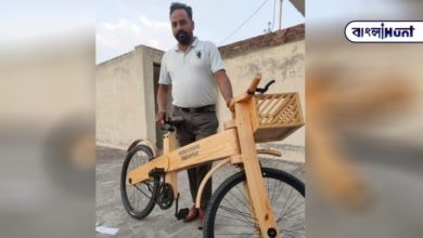 Photo of Self-reliant India; An Indian youth made a wooden bicycle and put it on the shelf