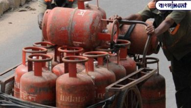 Photo of Cooking gas can also be booked on WhatsApp, here are some more important rules; Find out with one click