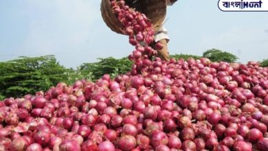 Photo of The big decision regarding the price of onion is the guideline issued by the Modi government