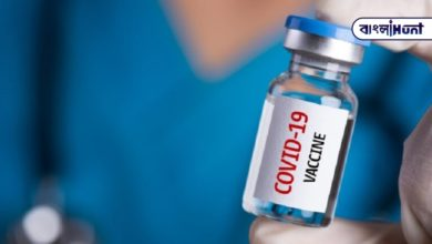 Photo of When will the corona vaccine be introduced in India, said the Serum Institute