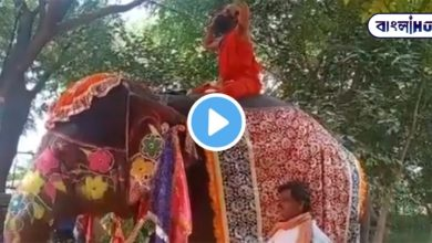 Photo of Baba Ramdev was sitting on the back of an elephant and doing yoga, suddenly fell down! The video is viral