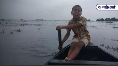 Photo of The teenager sang along the boat, a flood of praise in viral videos on social media